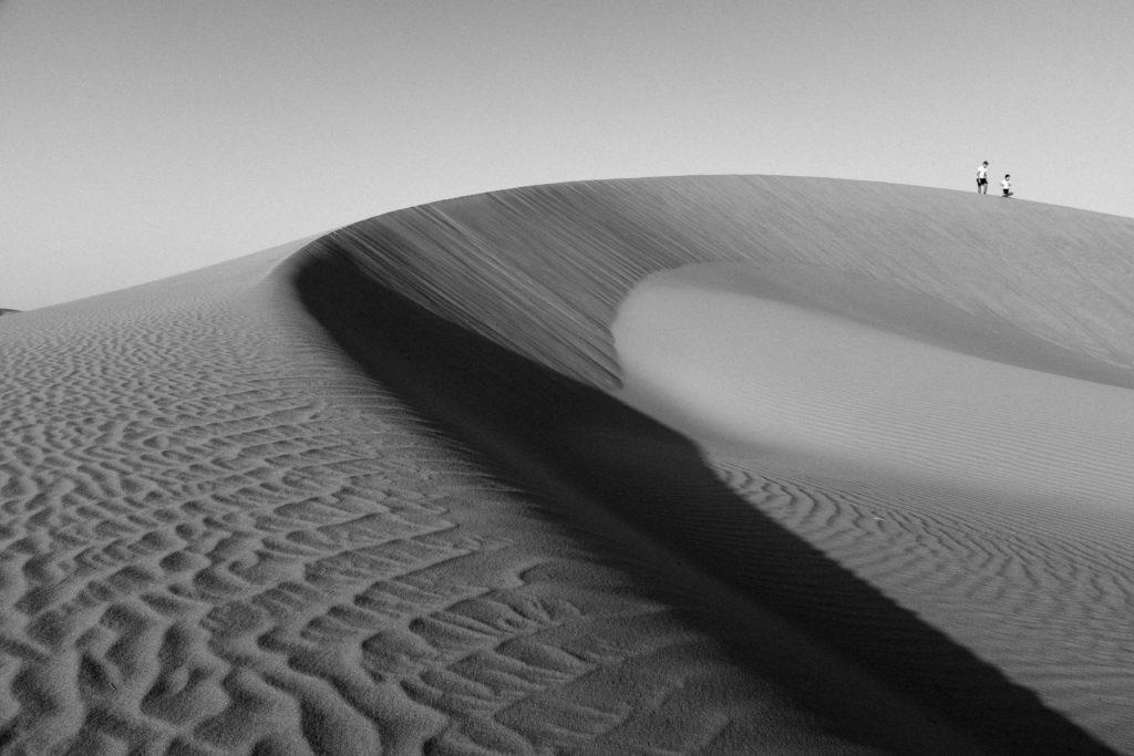 Sand Dune in Liwa desert in black and white